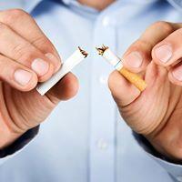 `Bombshell` rook verslag treffers mylpaal