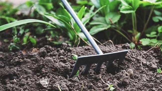 Hoe `n tuin gereedskap het my jongste hulptoestel